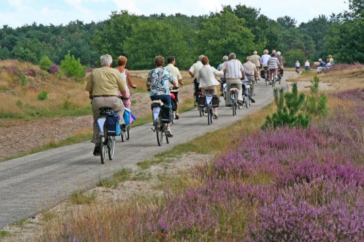Teamuitjes bedrijfsuitjes teambuilding sportief stedentrips organiseren regelen Oost Nederland Nijverdal Rijssen Holten Hellendoorn Almelo